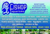 Fishop Aquarismo