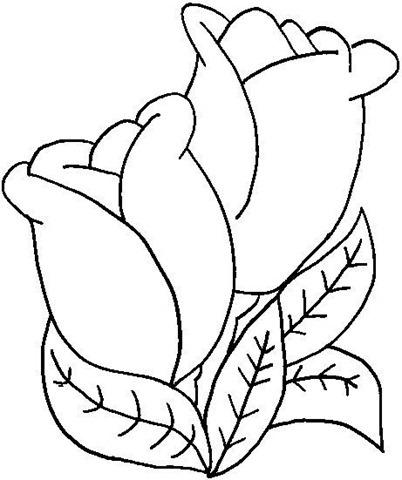 flor desenho avaré guia avaré guia oficial da cidade de avaré
